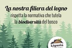 Box-pubblicitario_biodiversita